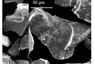 İlkin qarışıqda pirit dənələri üzərində kristallar böyüdü