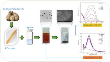 Kimyaçılar su təmizləyici istehsalı üçün bir üsul işlənib hazırladılar