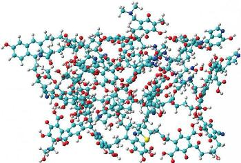 Химики МГУ изучили распределение карбоксильных групп в гуминовых веществах