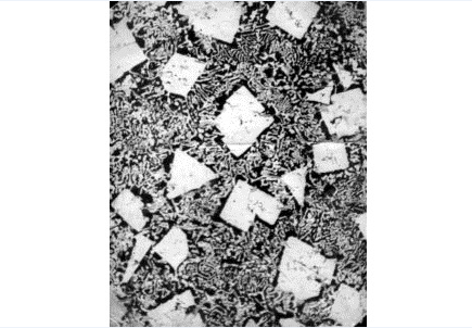Gələcək polad növü mikroskop altında