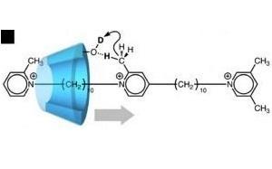 Yalnız bir istiqamətdə hərəkəti təmin edən ilk moleklyar maşın yaradılmışdır
