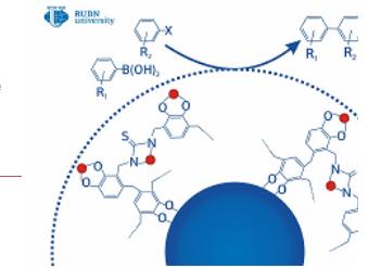 """RUDN Universitetinin kimyaçısı, dərman məhsulları və sənaye kimyası üçün """"yaşıl"""" bir katalizator yaratdı"""