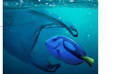 Солнечный свет превращает пластик в океане в «суп» из новых токсичных химикатов