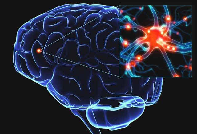 Beyni qocalmaqdan qorumağın 9 BƏSİT ÜSULU
