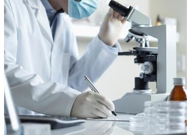 Ученые создали пленки из экологически чистых глинистых минералов и красителей